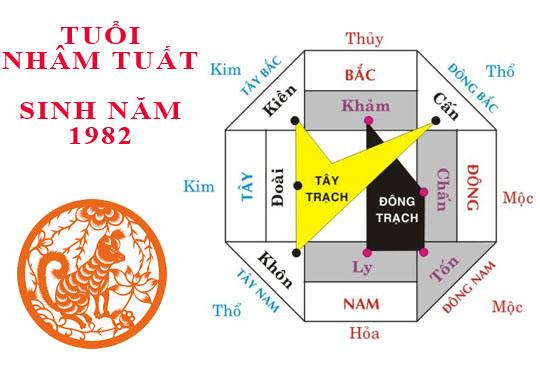 nam-1982-hop-huong-nao