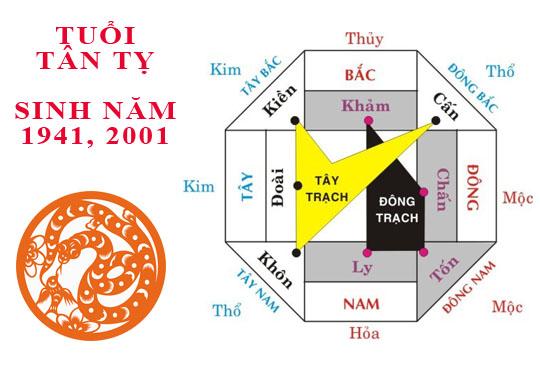 Sinh năm 2001 Tân Tỵ hợp hướng nào?