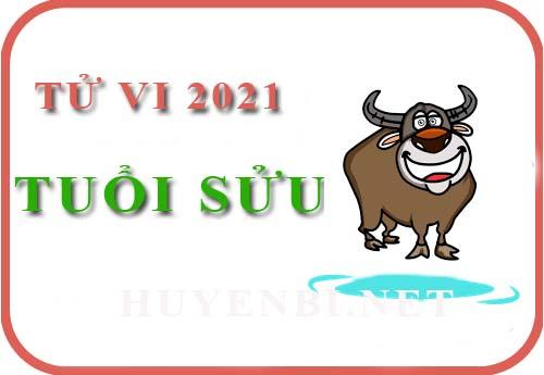 Luận giải Tử vi tuổi Sửu năm 2021 Tân Sửu cho nam, nữ mệnh: Tân Sửu, Quý Sửu, Ất Sửu, Đinh Sửu, Kỷ Sửu