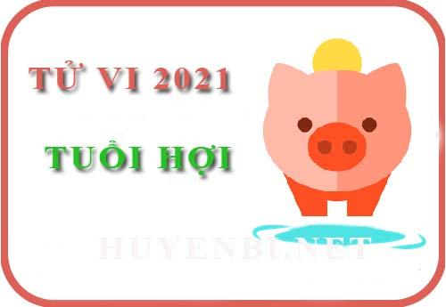 Luận giải Tử vi tuổi Hợi năm 2021 Tân Sửu cho nam, nữ mệnh: Tân Hợi, Quý Hợi, Ất Hợi, Đinh Hợi, Kỷ Hợi