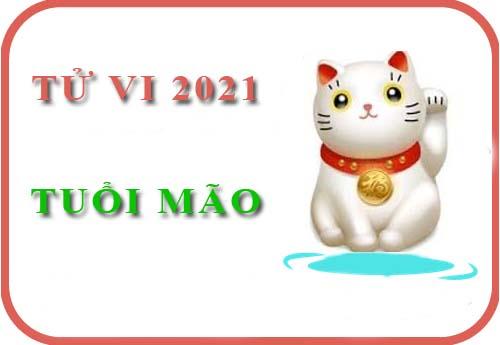 Luận giải Tử vi tuổi Mão năm 2021 Tân Sửu cho nam, nữ mệnh: Tân Mão, Quý Mão, Ất Mão, Đinh Mão, Kỷ Mão