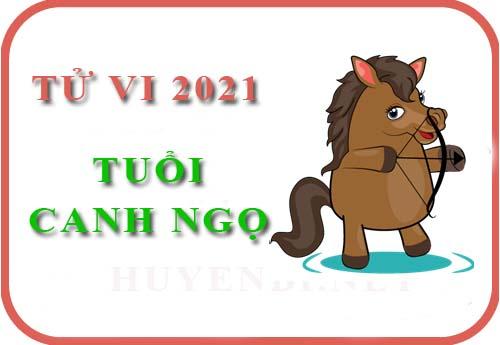 Luận giải Tử vi tuổi Ngọ năm 2021 Tân Sửu cho nam, nữ mệnh: Canh Ngọ, Nhâm Ngọ, Giáp Ngọ, Bính Ngọ, Mậu Ngọ