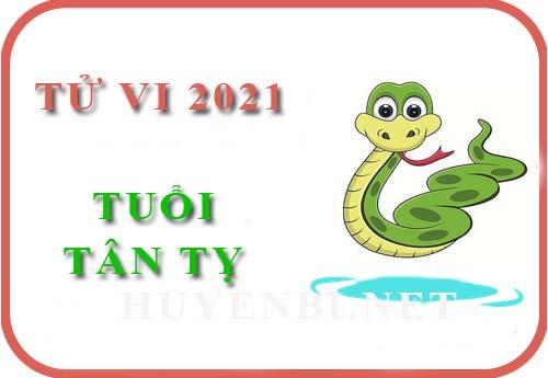 Luận tử vi năm 2021 tuổi Tân Tỵ 2001 nam, nữ mệnh